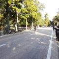 奈良マラソン2016 必死のパッチで応援